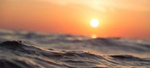 Морская родословная